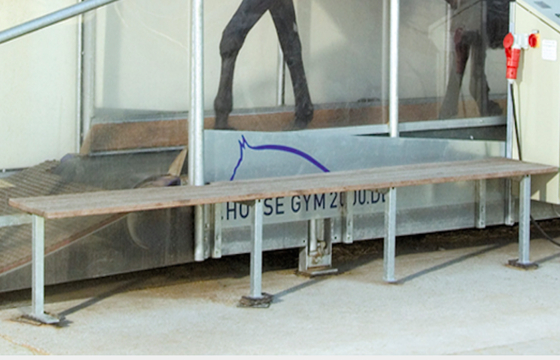 Horse Gym 2000 | Examination Stand